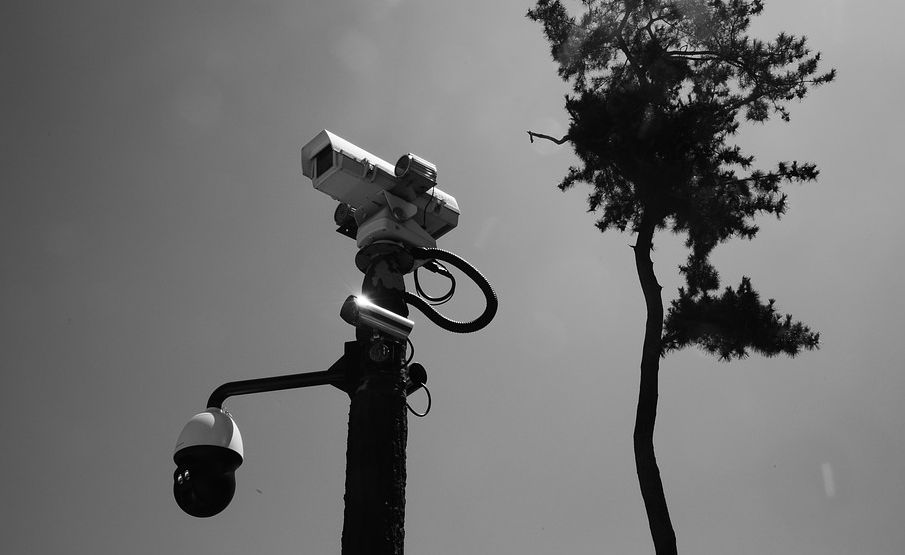 Кому нужно система видеоконтроля в загородном доме